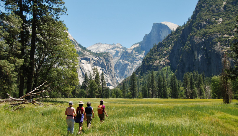 Wyoi-yosemite-walking